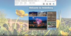 WebsiteHeidelbergMarketing